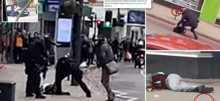 Police shoot man dead after 'terrorist-related' knife attack in London